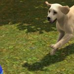 the-sims-3-pets-banner