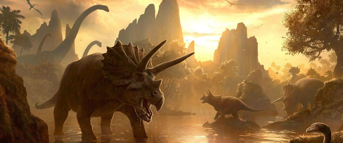 dinox-image