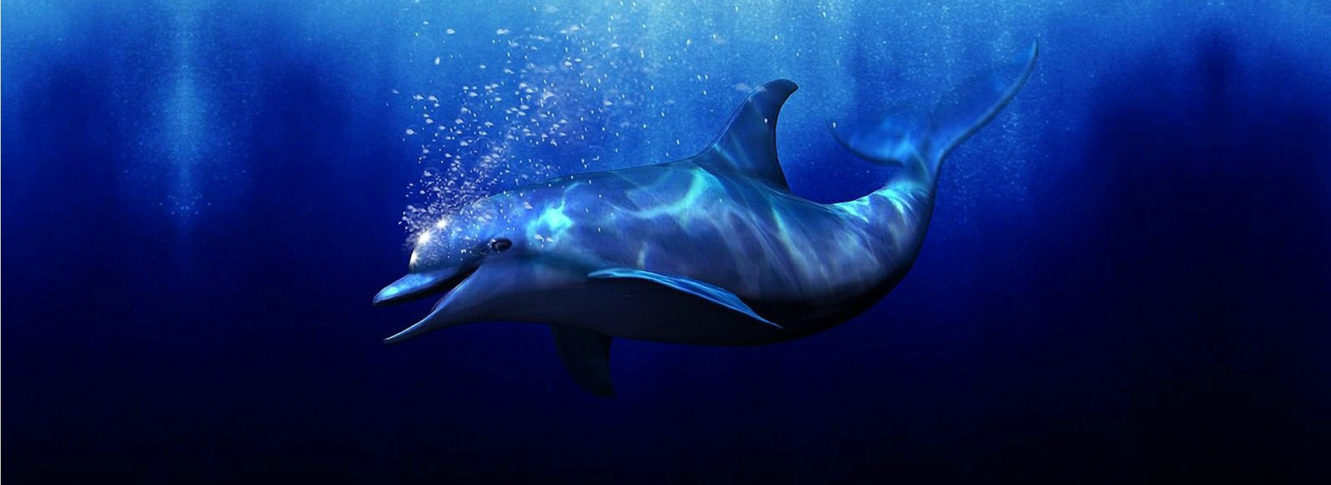 3d-ecco-the-dolphin-banner