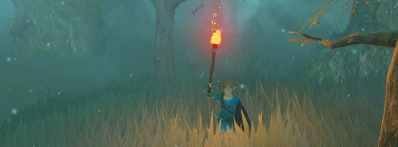 The Legend Of Zelda: Breath Of The Wild Guide: How To Get Through The Lost Woods