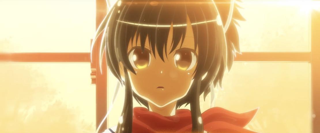 shinobi-refle-senran-kagura-image