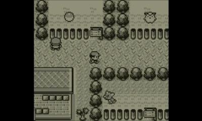 pokemon-red-review-screenshot-2