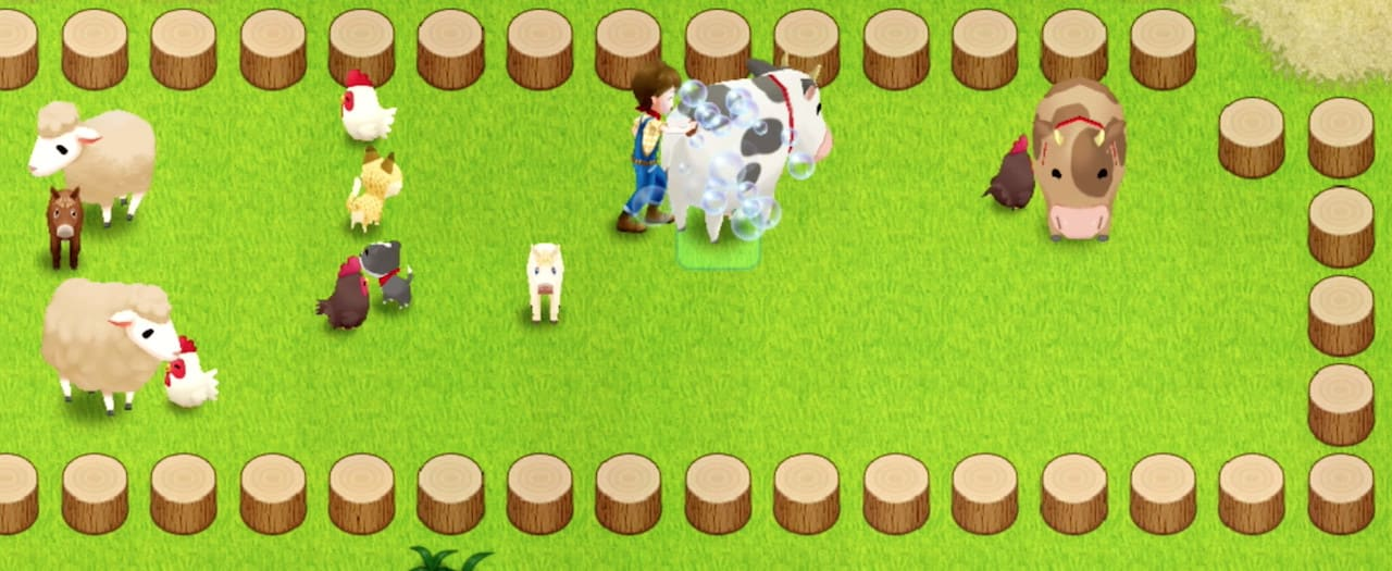Harvest Moon: Light Of Hope Screenshot