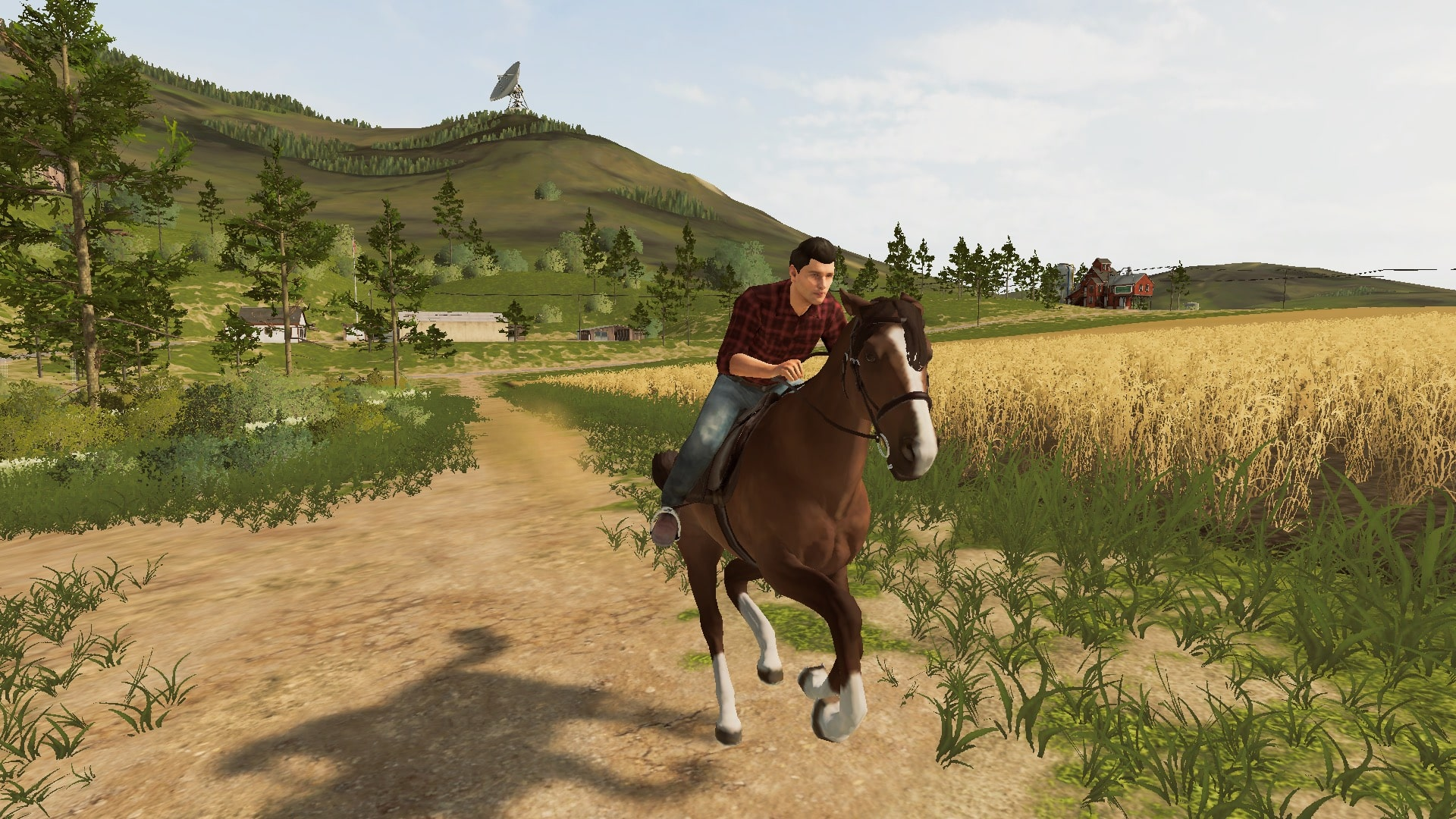 Farming Simulator 20 Switch Screenshot 4