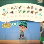 Animal Crossing New Horizons Pocket Organization Guide Screenshot