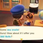 Animal Crossing New Horizons Shell Prices Screenshot