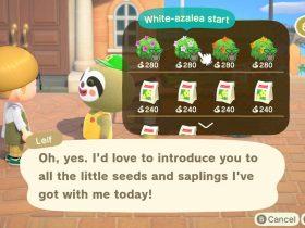 Animal Crossing: New Horizons Leif Screenshot