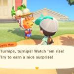 Turnips Animal Crossing: New Horizons Screenshot