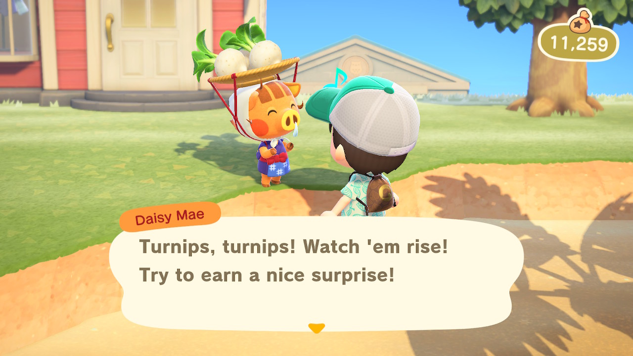 Turnips Animal Crossing: New Horizons Screenshot